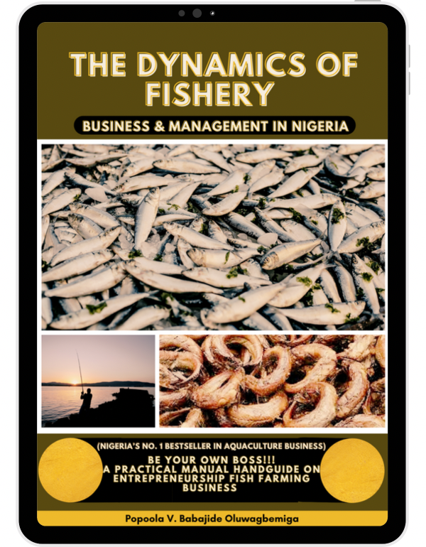 The Dynamics of Fishery Business & Management in Nigeria